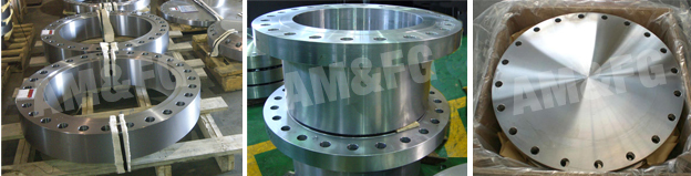 forged-flanges